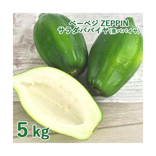 シャキシャキ食感 ZEPPINサラダパパイヤ 5kg(5〜12個) 青パパイヤ パパイン酵素 無農薬 ベーベジ【送料無料】