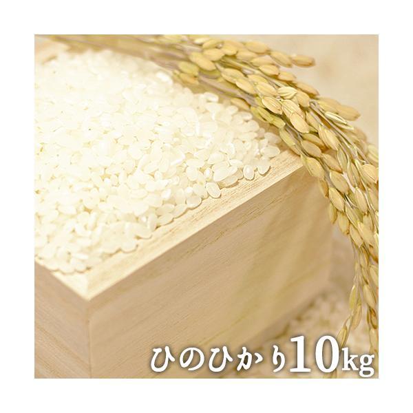 令和3年 山香米 ひのひかり(精米)10kg(5kg×2) 有機質肥料使用 杵築市山香町 ベストファーマー認定 色彩選別機導入 山香ゆうきの会 送料無料