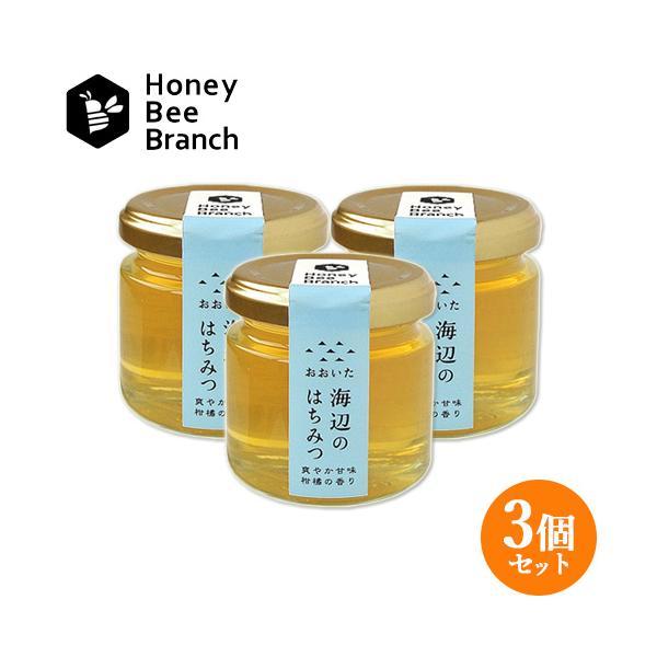 枝次養蜂園 おおいた海辺のはちみつ 味くらべボトルシリーズ 90g×3【送料無料】