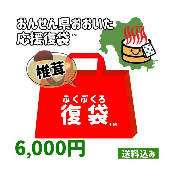 【応援企画】原木椎茸(乾燥)&しいたけ加工品5個詰め合わせ 大容量1点以上必ず入ります 常温 大分県支援 復興福袋 【送料込み】