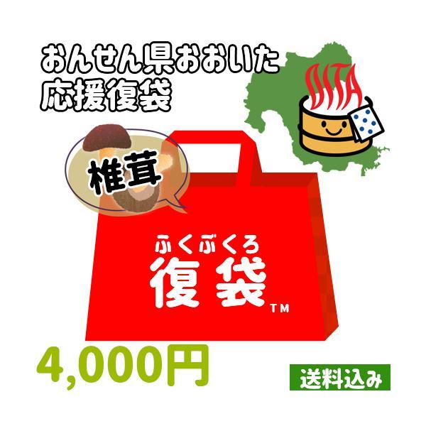 【応援企画】原木椎茸(乾燥)&しいたけ加工品4個詰め合わせ 常温 大分県支援 復興 【送料込み】