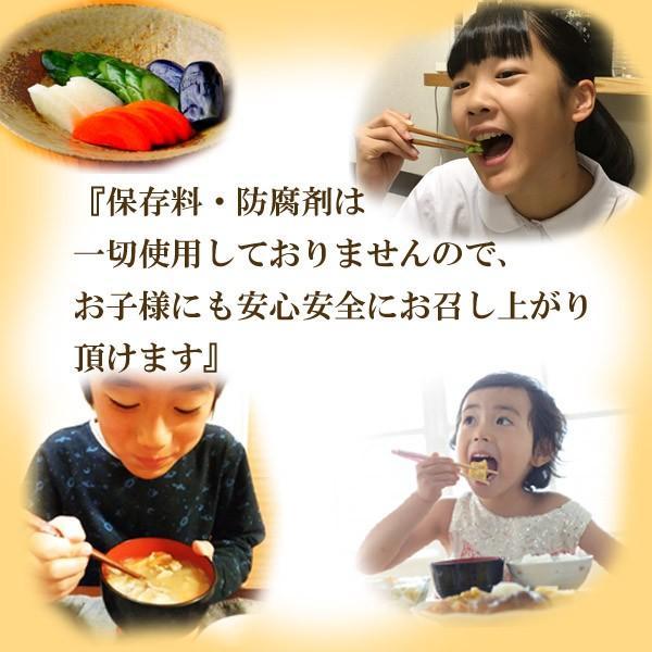 ぬか床 新商品「富士山ぬかみそ 駿河の恵み」 1kg|ookawa-syokuhin01|08