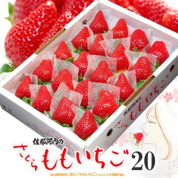 さくらももいちご(20粒 約700g)徳島産 いちご イチゴ 送料無料