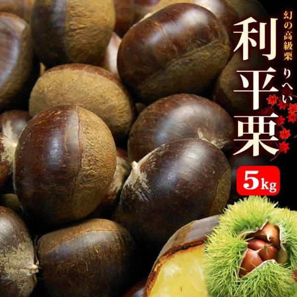 利平栗 2L(5.3kg)熊本/愛媛/茨城産 和栗 生栗 栗 利平 送料無料