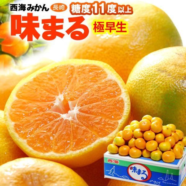 西海みかん 極早生味まる(5kg)長崎産 糖度選果11度以上 送料無料