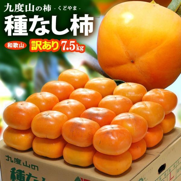 訳あり種なし柿(約7.5kg)和歌山九度山産 ご家庭用 柿 送料無料