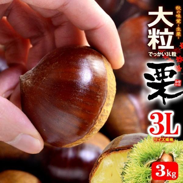 栗3L(約3kg)茨城・熊本・愛媛産 大粒 和栗 くり クリ 送料無料