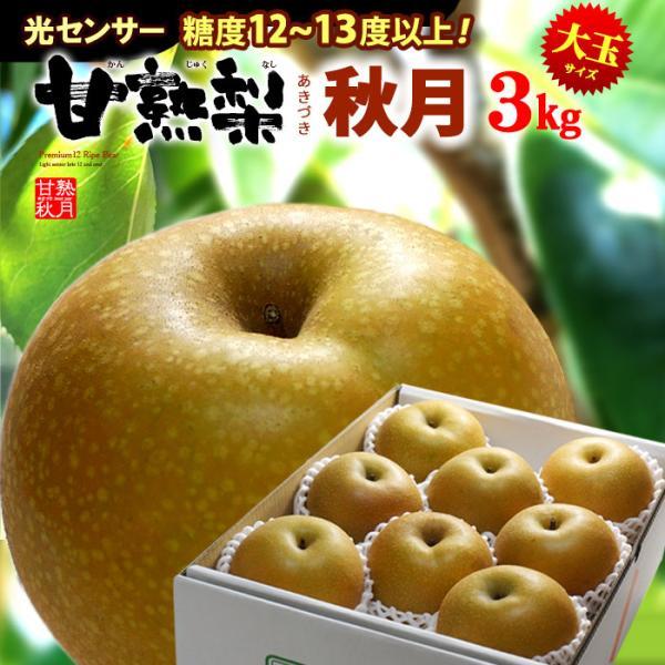 甘熟梨 あきづき 秋月梨(約3kg)産地お任せ 秀品 ギフト 大玉