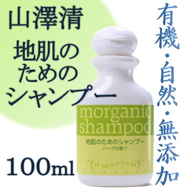 山澤清 地肌のためのシャンプー 100ml