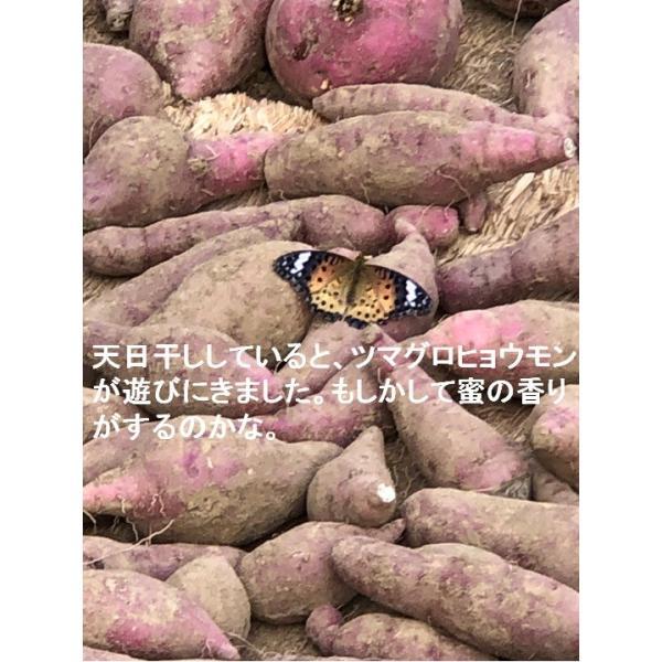 【増産100袋限定】この冷凍焼き芋で感動してください。こんな焼き芋食べたことない! あなたを笑顔&元気にする冷凍焼き芋(紅はるか)400g 家庭用  |oomugiya-isakoubou|20