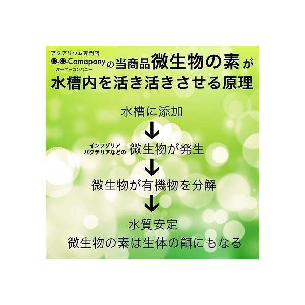 o-o-カンパニー【オーオーカンパニー】微生物の素 10g【稚エビ、メダカ稚魚餌】|ooo|06