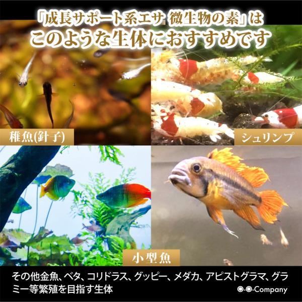 OーOー(オーオー)成長促進系エサ 微生物の素 プロテイン入り メダカ 稚魚(針子) 熱帯魚の餌|ooo|06