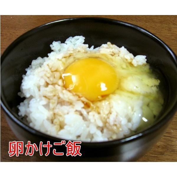 燻製醤油10本セット 卵かけご飯やステーキに 館山燻煙醤油(千葉県優良県産品)|oosawakunsei|03