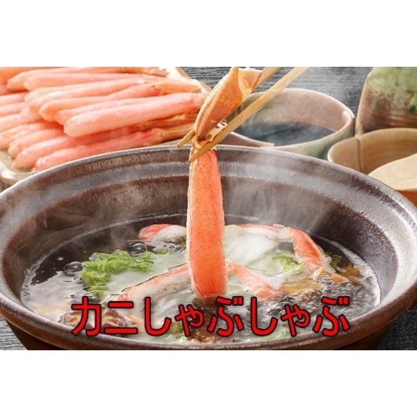 パクチー香酢醤油6本セット/ラーメンのチョイたし、鍋物のつけタレ、ギョウザのタレに|oosawakunsei|03