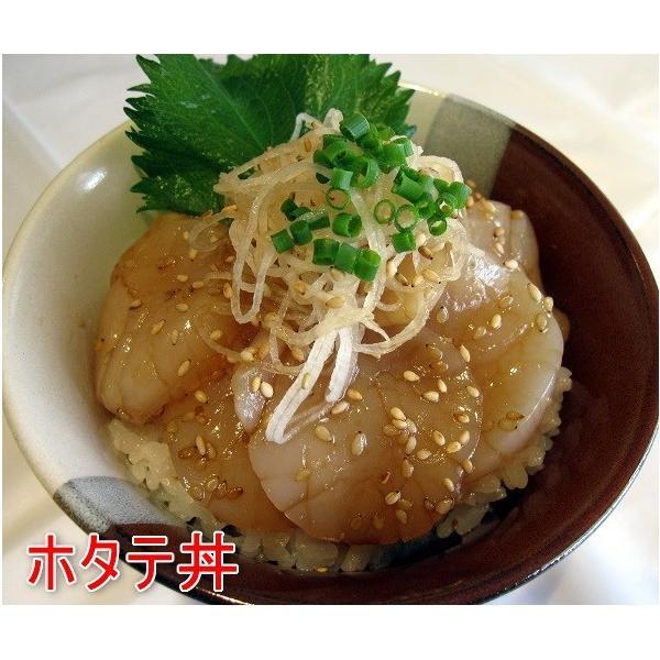 漬け丼の素3本セット 牛丼・豚丼・マグロ丼・焼き肉のタレ/千葉県優良県産品|oosawakunsei|04