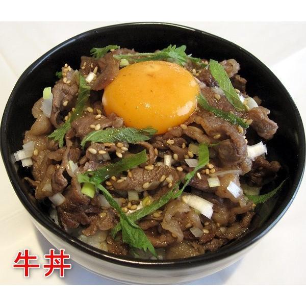 漬け丼の素3本セット 牛丼・豚丼・マグロ丼・焼き肉のタレ/千葉県優良県産品|oosawakunsei|05