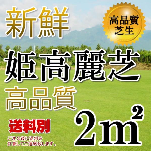 芝生 姫高麗芝 2平米 鹿児島産|oosumi
