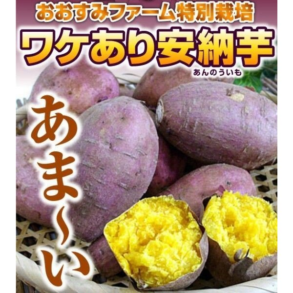 【5kg送料込み】ねーっとりトロトローな甘い安納芋をペーストにしちゃいました♪安納芋ペースト1kg×5個