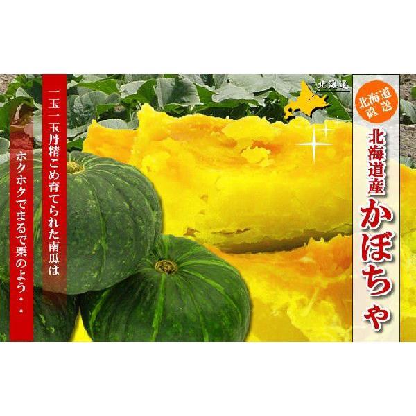 北海道産 かぼちゃ10kg(4〜6玉)