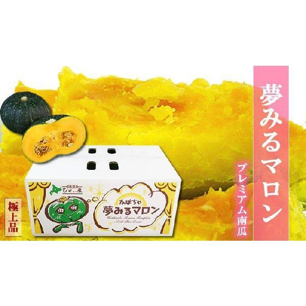 北海道 美瑛町産かぼちゃ 夢みるマロン10kg(4〜6玉)