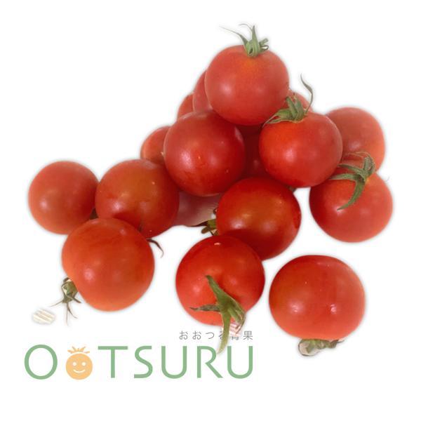 ミニトマト(プチトマト) 1パック、Mサイズ 福岡・大分・長崎・九州産