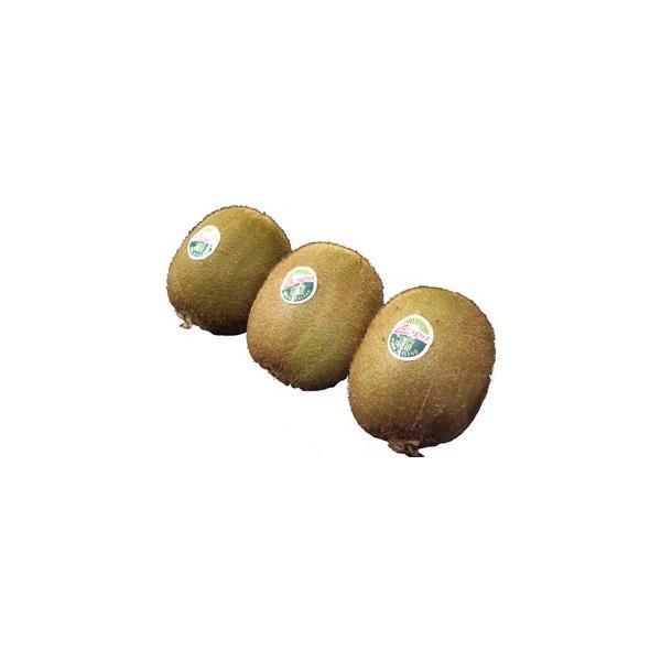 グリーンキウイ(キウイフルーツ) 3玉 ニュージーランド