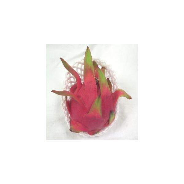 ドラゴンフルーツ(ホワイト、白肉種)(ピタヤ・火龍果) 1玉 ミネラルとビタミン豊富なヘルシーフルーツ♪