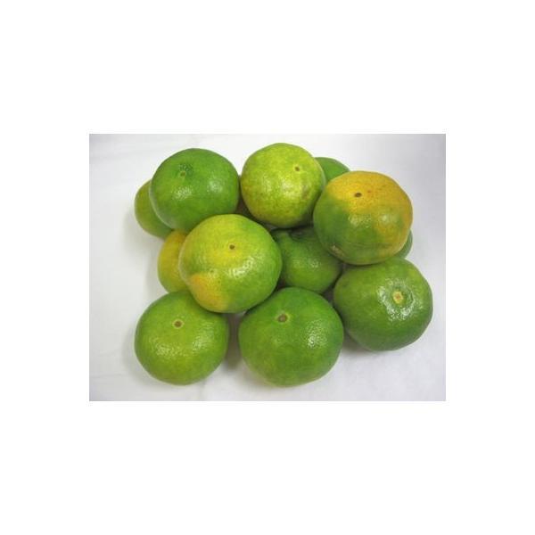 九州産 極早生みかん(みかん・ミカン) 1kg 九州の安心・安全な果物! 【九州・福岡産】 【常温】