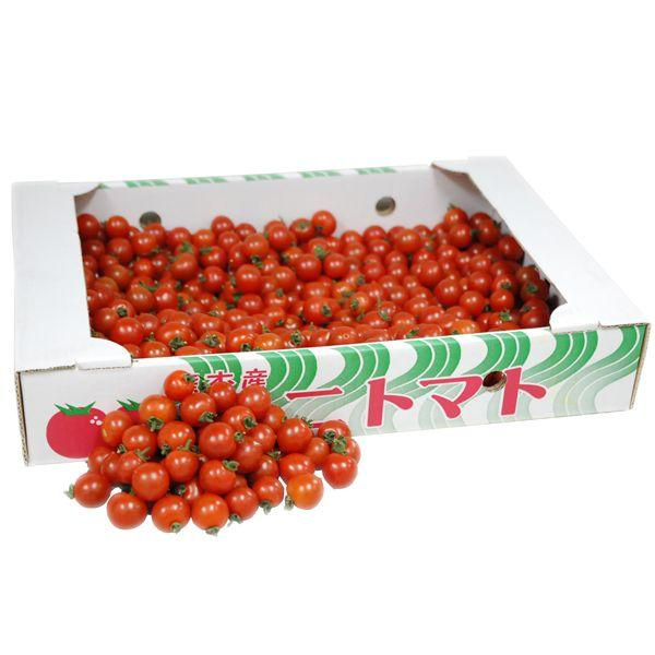 【箱売り】 ミニトマト(ミニとまと) S〜2L 1箱(約3kg) [国産] 【業務用・大量販売】【RCP】