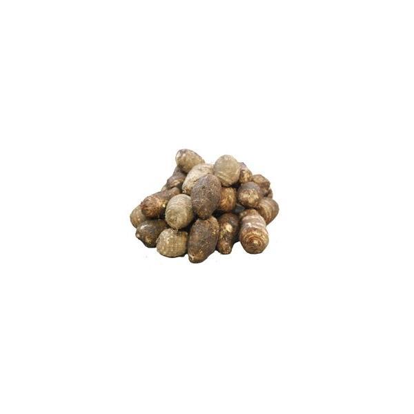 〔お徳用〕 九州産 里芋(さといも・サトイモ) 2kg 九州の安心・安全な野菜! トロ〜リ美味しい♪  【九州・熊本産】