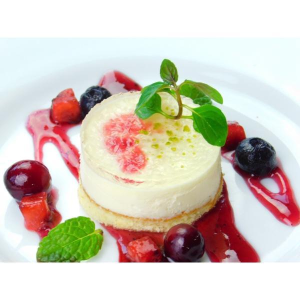 学園祭 お祭り TM セルクルムース レアチーズ*310g(10個)|ootuki|05