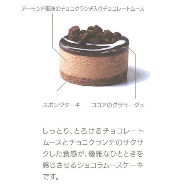 【クリポス不可】【クール便発送】TM セルクルムース ショコラ*310g(10個)|ootuki|04