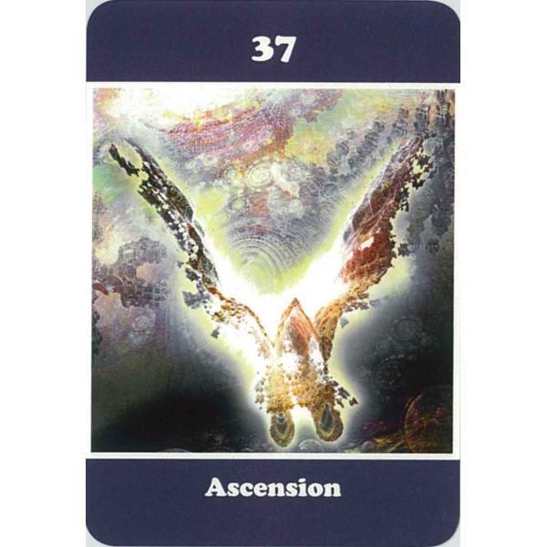 ヤントラスピリチュアルカード|oracle-tarot|13