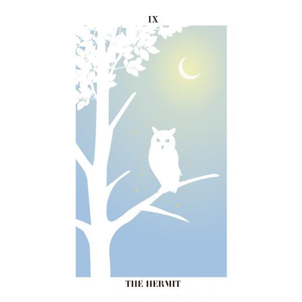 バード・シルエット・タロット〜THE BIRD SILHOUETTE TAROT〜|oracle-tarot|11