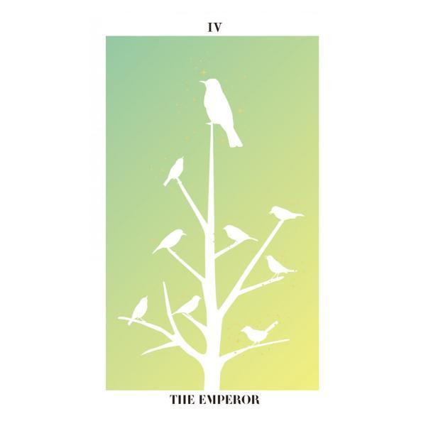 バード・シルエット・タロット〜THE BIRD SILHOUETTE TAROT〜|oracle-tarot|07