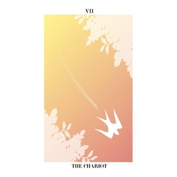 バード・シルエット・タロット〜THE BIRD SILHOUETTE TAROT〜|oracle-tarot|09