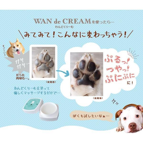 わんどくりーむ 100% 天然素材 肉球ケアクリーム 30ml WAN de CREAM キャプトスタイル CAPT.STYLE 肉球保護 犬 猫 ペット 用品 保湿 皮膚 肌 手 足 軟膏|oremeca|17