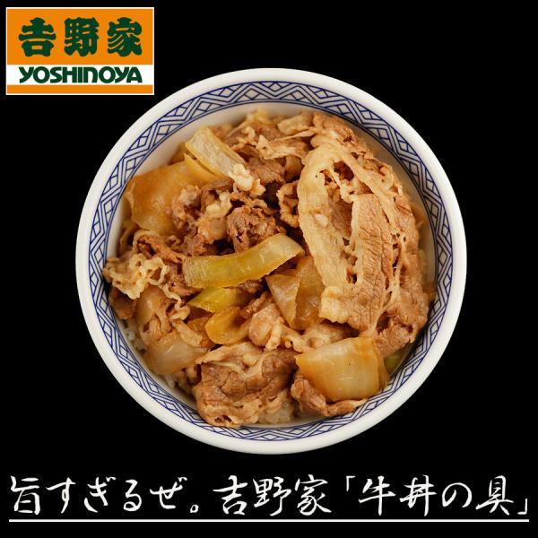 吉野家牛丼の具10袋セット