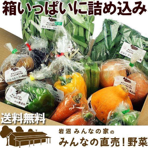 送料無料 野菜セット 岩沼みんなの家のみんなの直売!野菜|organic