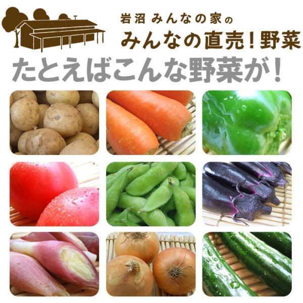 送料無料 野菜セット 岩沼みんなの家のみんなの直売!野菜|organic|02