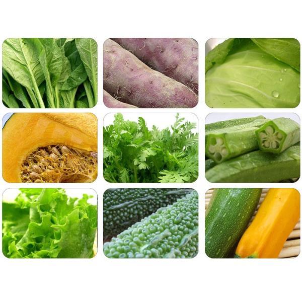 送料無料 野菜セット 岩沼みんなの家のみんなの直売!野菜|organic|03