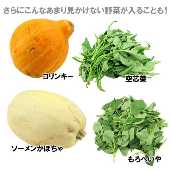 送料無料 野菜セット 岩沼みんなの家のみんなの直売!野菜|organic|04