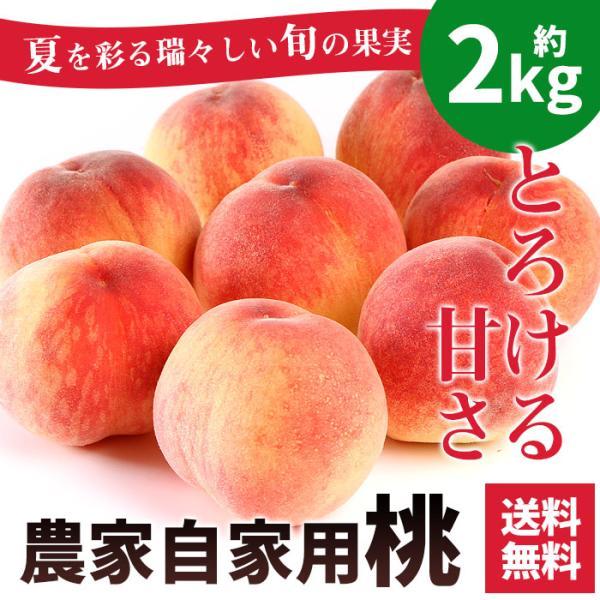 お中元 桃 訳あり 農家自家用 もも 約2kg 山梨県産 送料無料 わけあり 自宅用 フルーツ 果物 ギフト プレゼント 贈答用