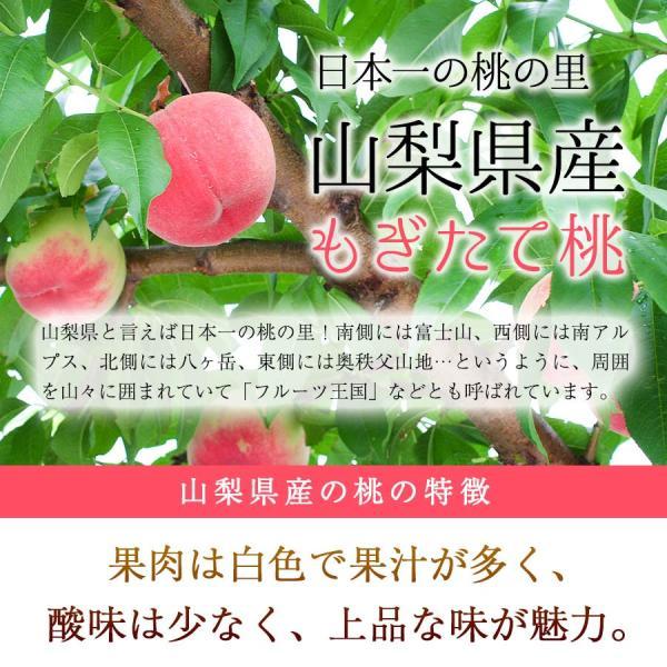 お中元 クラウンメロン 1玉 桃 4玉 セット 送料無料 メロン もも 送料無料 果物 フルーツ 詰め合わせ ギフト プレゼント 贈答用 自宅用 organic 05