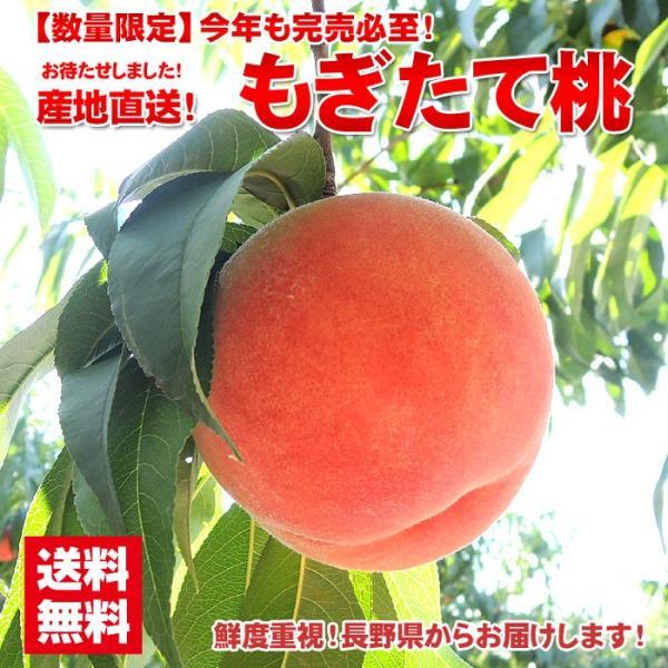 お中元 御中元 果物 桃 詰め合わせ ギフト ギフトランキング ギフト 送料無料 フルーツ 農家自家用 長野県産もぎたて桃 約2kg フルーツ もも 訳あり ワケ わけ|organic