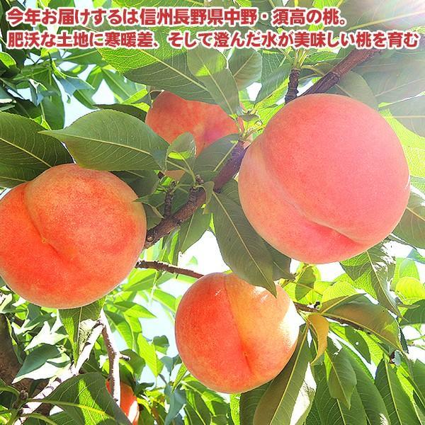 お中元 御中元 果物 桃 詰め合わせ ギフト ギフトランキング ギフト 送料無料 フルーツ 農家自家用 長野県産もぎたて桃 約2kg フルーツ もも 訳あり ワケ わけ|organic|02
