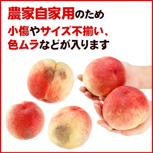 お中元 御中元 果物 桃 詰め合わせ ギフト ギフトランキング ギフト 送料無料 フルーツ 農家自家用 長野県産もぎたて桃 約2kg フルーツ もも 訳あり ワケ わけ|organic|06