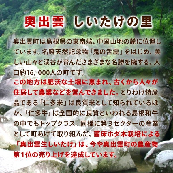 送料無料 島根県産 しいたけ 特大サイズ 奥出雲しいたけ 雲太1号 約1kg 椎茸 シイタケ|organic|04