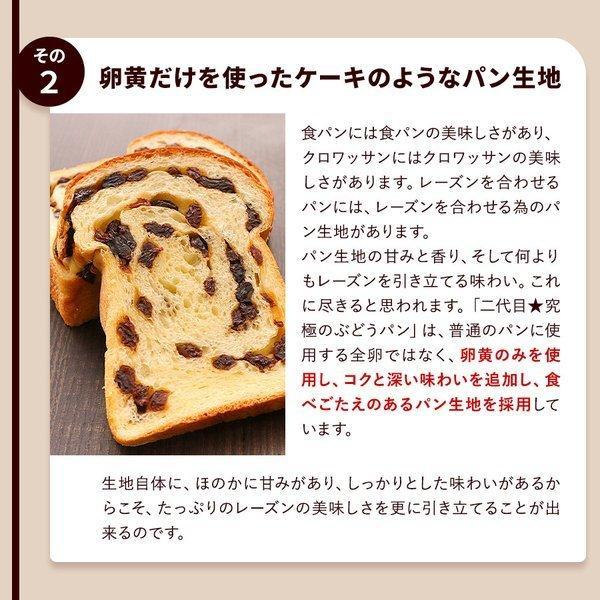 パン 食パン 送料無料 究極のぶどうパン(pn)|organic|04