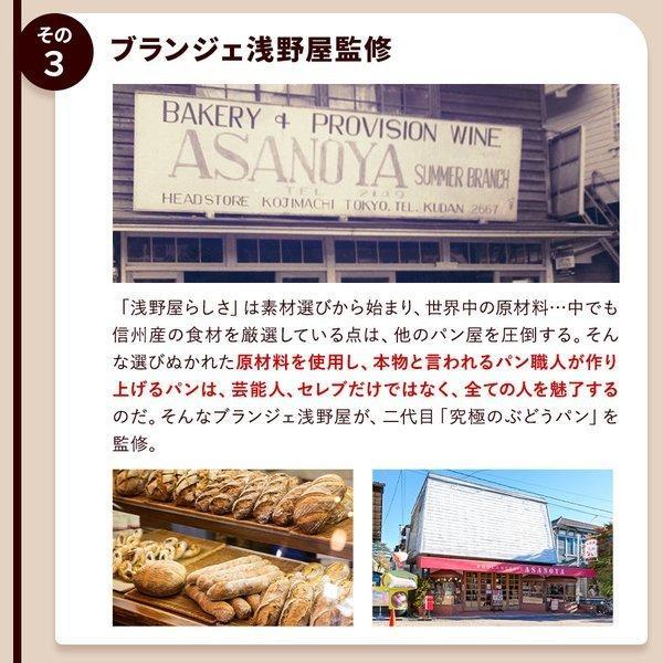 パン 食パン 送料無料 究極のぶどうパン(pn)|organic|05